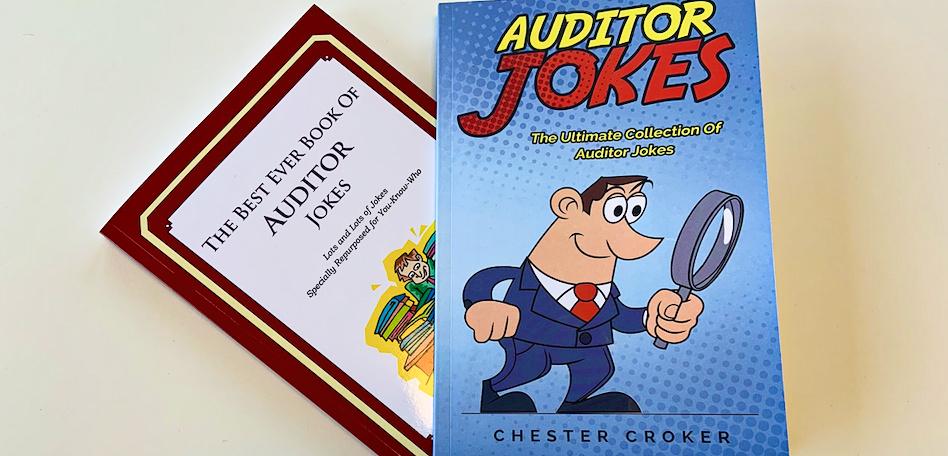 Auditor jokes